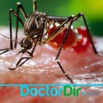 dr_dir_fb_post_9